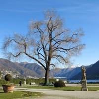 Park der Villa Olmo Como
